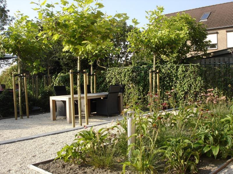 Blonk tuinontwerp fotos - Terras en tuin ontwikkeling foto ...